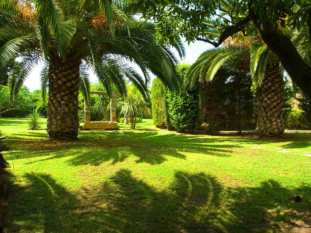 giardino4