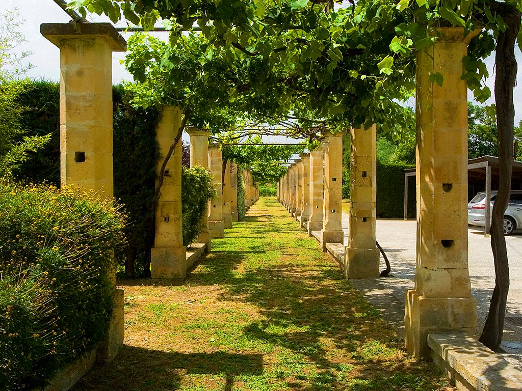 giardino6
